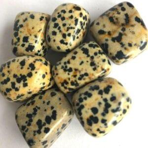 Dalmatiner jaspis