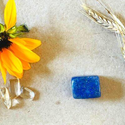lapis lazuli og solsikke
